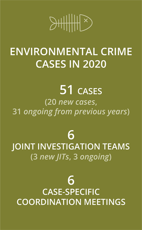 Environmental crime cases in 2020